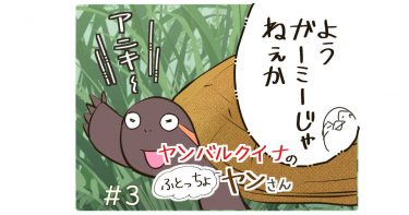 #03「ガーミーとうじょう」